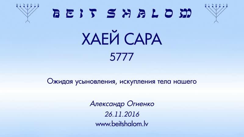 «ХАЕЙ САРА» 5777 «Ожидая усыновления, искупления тела нашего» А.Огиенко (26.11.2016)