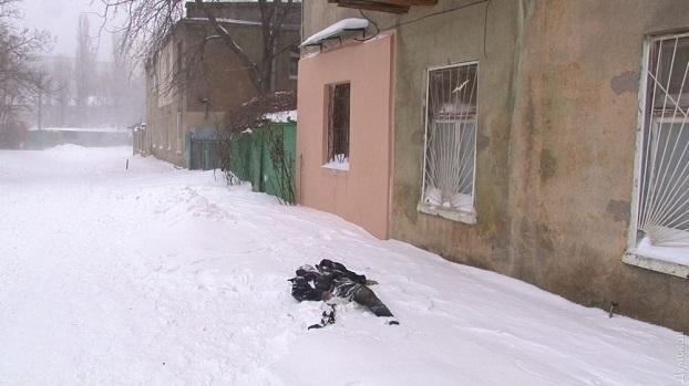 Четверо подростков чуть не умерли от паленой водки в Константиновке