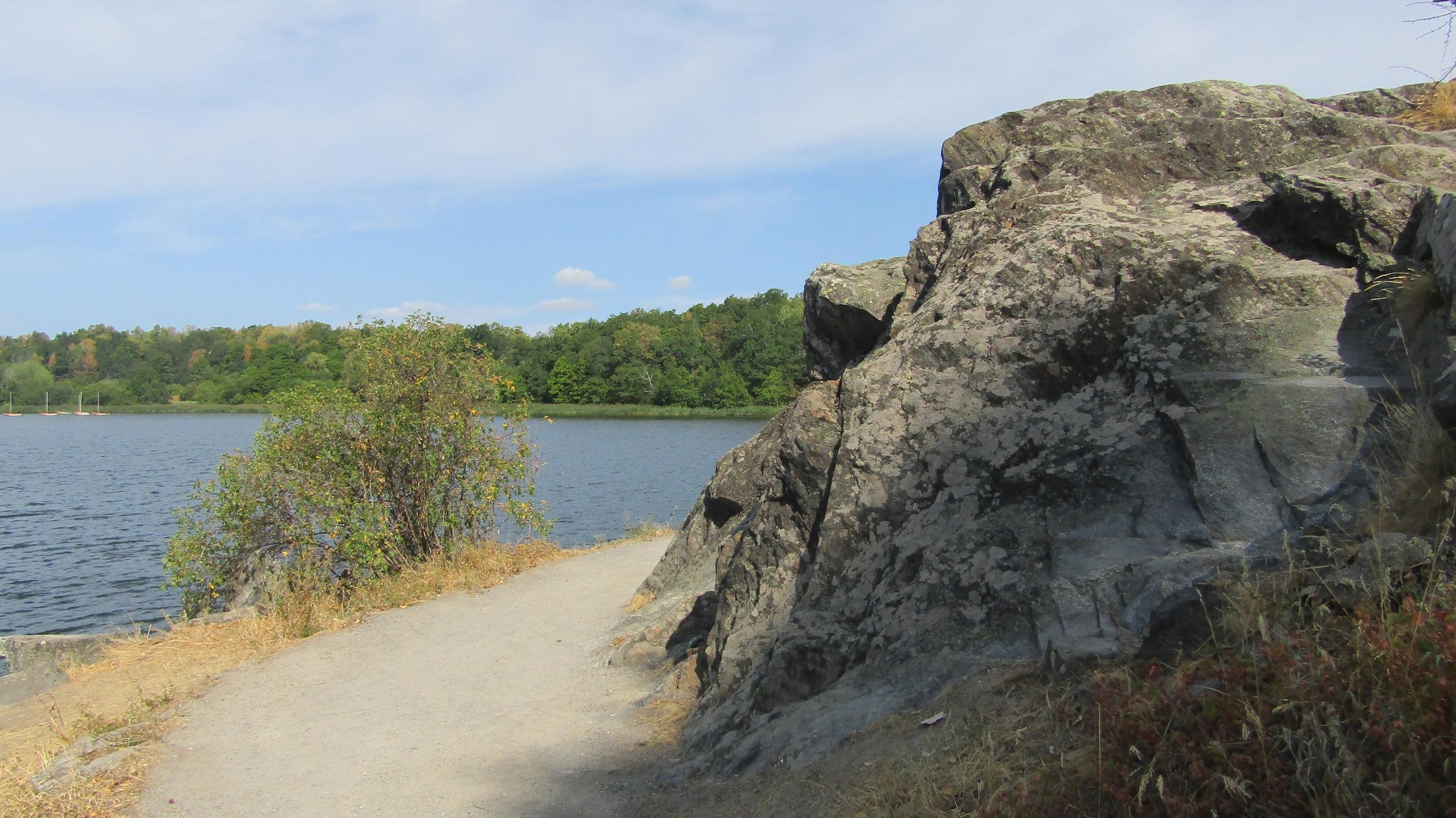 Прогулка по ботаническому саду Стокгольма, а также о флоре, фауне и рыбалке в Стокгольме