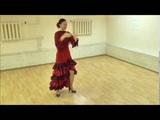 Amor Gitano baile Daniella Flores