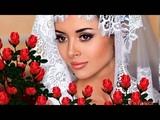 Розы Арвид