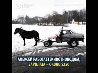 Audi 80 с лошадью вместо двигателя
