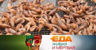 «Еда живая и мёртвая»: разница между дешевыми и дорогими креветками, вред от энергетиков и все о лавровом листе