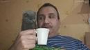 Пью кофе со своим котенком и мы вместе смотрим ТВ