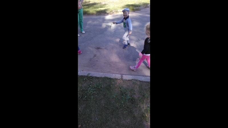 24.08.2018 Сашенька и дети играют с котом травинками
