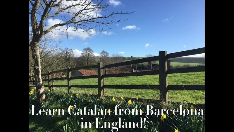 Learn Catalan in conversation intermediate