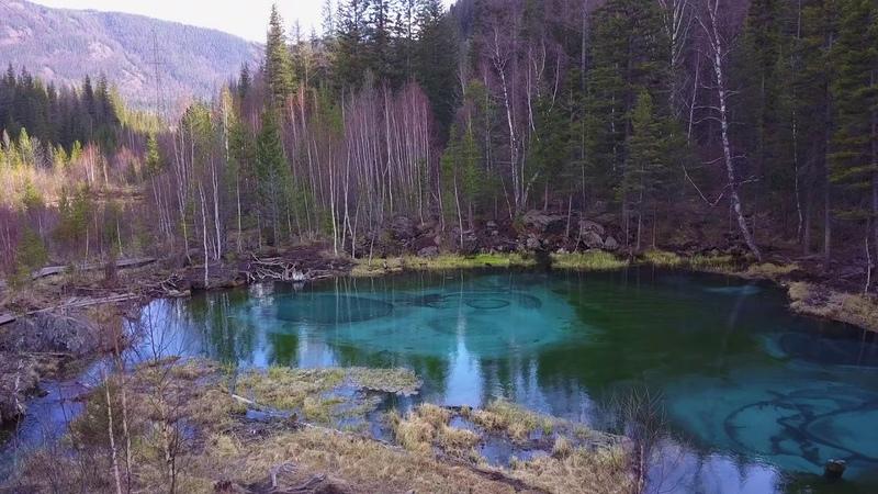 Алтай! Голубое гейзеровое озеро...