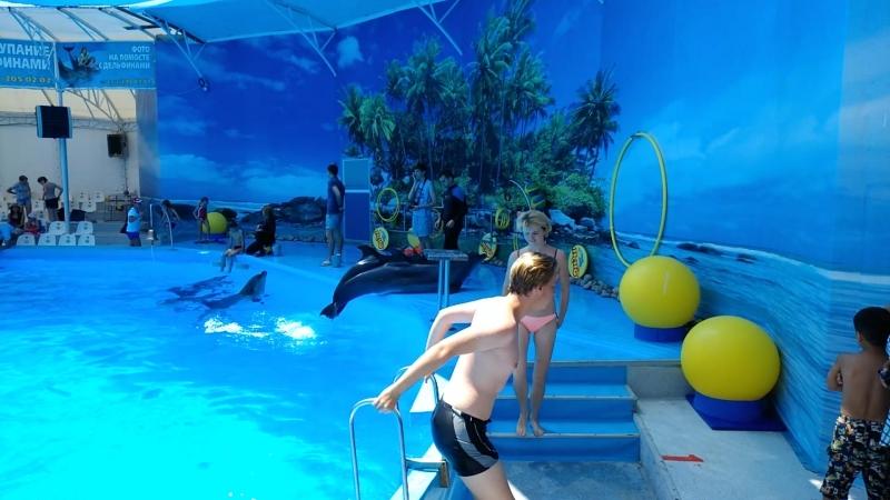 Фото в воде...  г. ФеодосиядельфинарийНЕМО