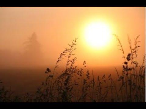 Лита - летнее Солнцестояние - время силы. Мощный заряд жизненной энергии