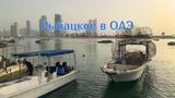 Рыбалка, рыбаки и лодки в ОАЭ Fishing Boats in the UAE