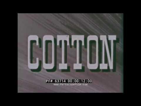 1950s COTTON INDUSTRY PROMOTIONAL FILM NATURE'S WONDER FIBER 63714