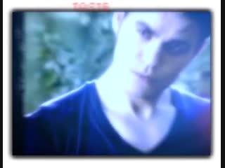 Stefan Salvatore 💦 👅 ││ The Vampire Diaries