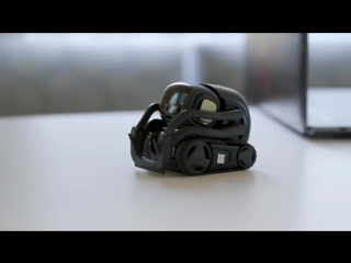 Vector_ Anki's tiny robot that wants to hang
