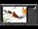 Моушн-графика для видеоредакторов: термины и техники