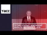 Путин открыл чемпионат мира по футболу — 2018