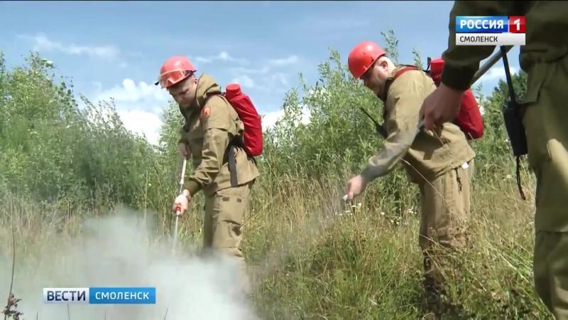 Смоленские спасатели обеспокоены увеличением возгораний леса