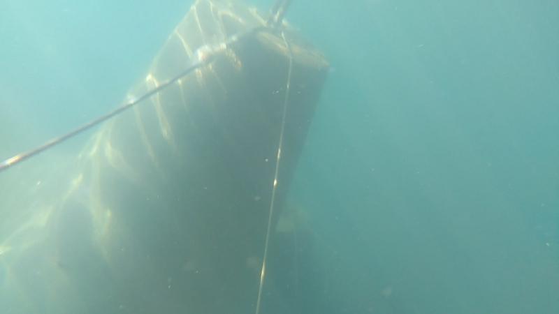 Подводное путешествие МОРЕ РЫБЫ !