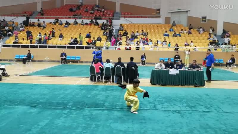 6.Шуан би шоу ( 双匕首) - 李名曜 (2017年北京市中小学武术比赛双匕首冠军)