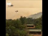Лесной пожар в Калифорнии стал рекордным за всю историю штата