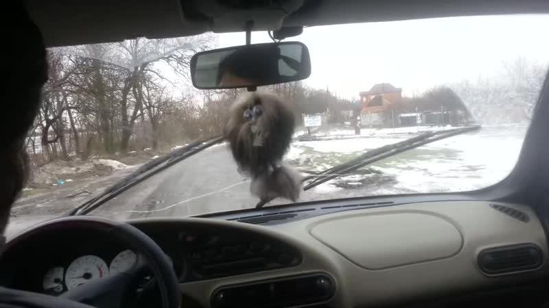 VID_20190124_111838_Домой по Азову, Красногоровке и трассе. Оттепель и дождик.