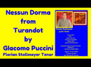 Nessun Dorma from Turandot by GIACOMO PUCCINI by Florian Stollmayer Tenor Toronto May 13 2019