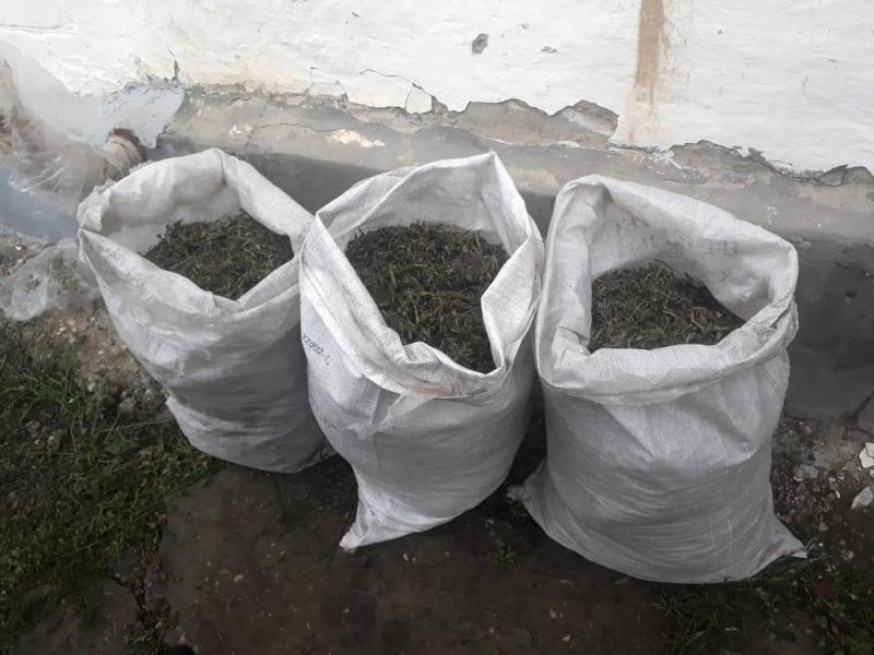 Около 9 кг наркотиков хранил у себя дома житель а.Псыжа