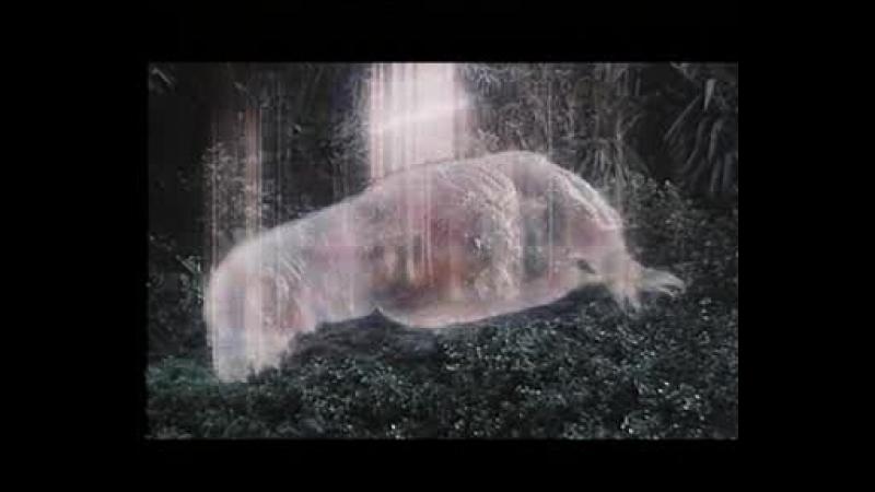 1991日本電影中英文字幕《戰龍哥斯拉之魔龍復仇/六度空間大水怪/哥斯拉vs王者基多拉/哥斯拉大戰基多拉國王》香港VCD版 第一部分 第1部分