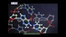 DNA Origin Structure and Properties