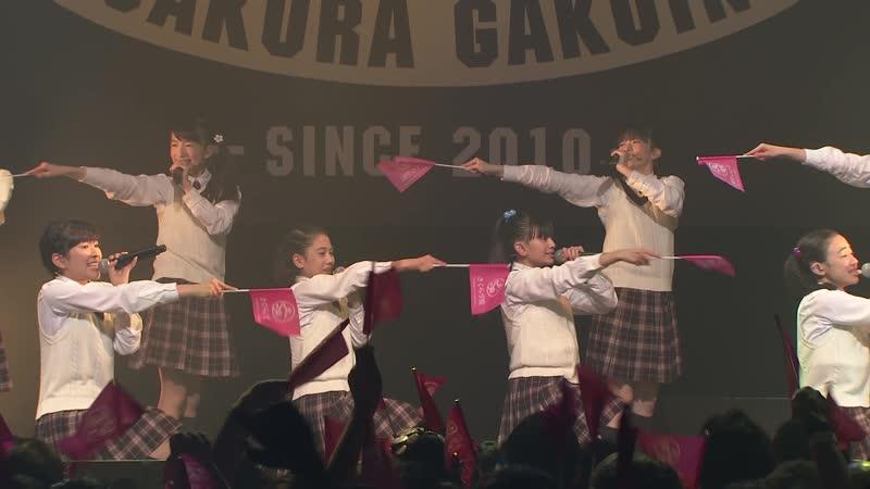 Sakura Gakuin 2018 ~After School Anthology~ (2018.09.29) @ TSUTAYA O-EAST
