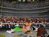 Randy Savage vs Jake Roberts