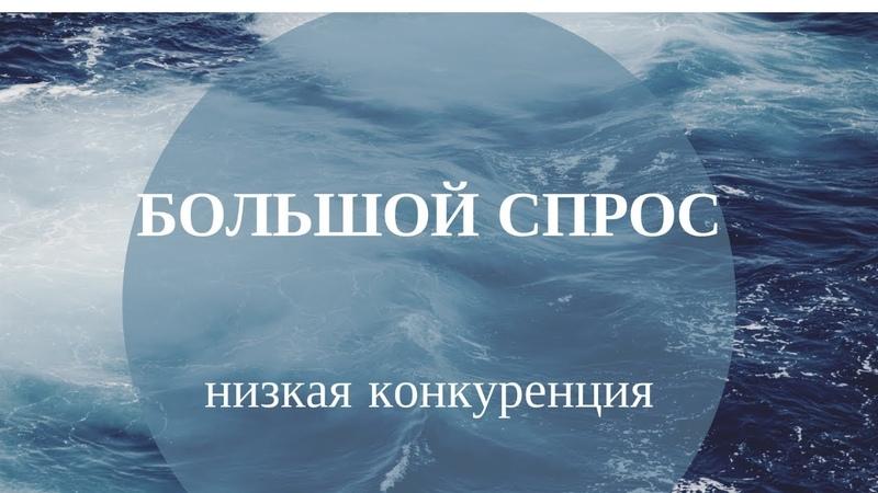 Заработок в интернете в контакте. Курс Голубой океан Вконтакте интервью