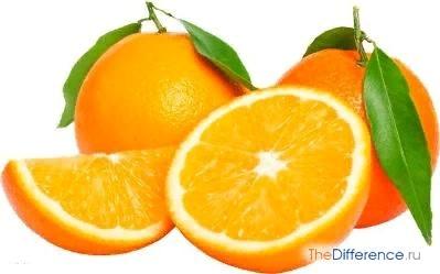 Разница между апельсином и мандарином Запах апельсинов и мандаринов у многих ассоциируется с Новым годом, нарядной елкой, боем курантов и пузырьками шампанского. Причем мы не всегда
