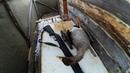 Охота на гуся на севере Весна