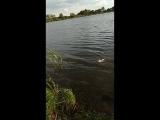 Рыбалка в Пензенской области с бом-бочкой от