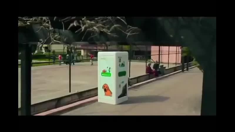 В Турции стоят автоматы которые в обмен на пластиковую тару насыпают корм для бездомных собак