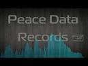 HONEY(Медя prod.)-Window[Peace Data Records] Биты.Инструментал для рэпа. Новая музыка.2019