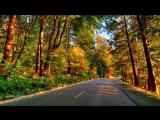 Скоро Осень, Господа, скоро Осень - Павел Соколов