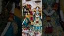 Sri Sri Radha Madan Gopal Ji Beautiful Morning Darshan Vrindavan