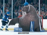 Морж на льду в воротах