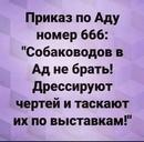 Елена Шапутько фото #1