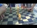 20.07.18, «Телекон»: День шахмат в Нижнем Тагиле