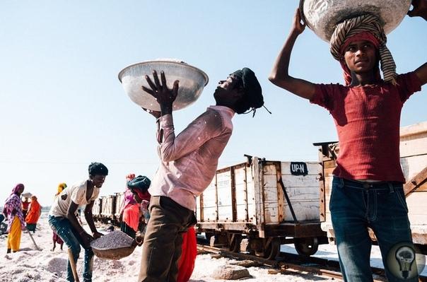 Один день сборщиков соли в Индии. Ч.-1