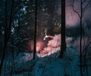 Павел Алехин фото #10