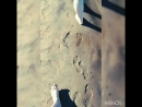 С моим сладким на пляже(типо пляж)😘💞💏