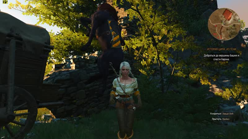 The Witcher 3 05.15.2019 - 00.06.53.02