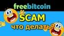 FreeBitcoin SCAM Что теперь делать школьнику 😱