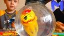 Игрушки вместо настоящих рыбок Немо и Дори