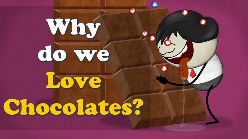 Why do we Love Chocolates? | aumsum kids education science chocolate