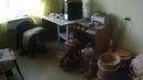 заготовили нарезали высушили и храним кору дома в квартире