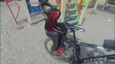 Детское велокресло Bellelli Mr Fox Standart B-fix. Ньюансы.
